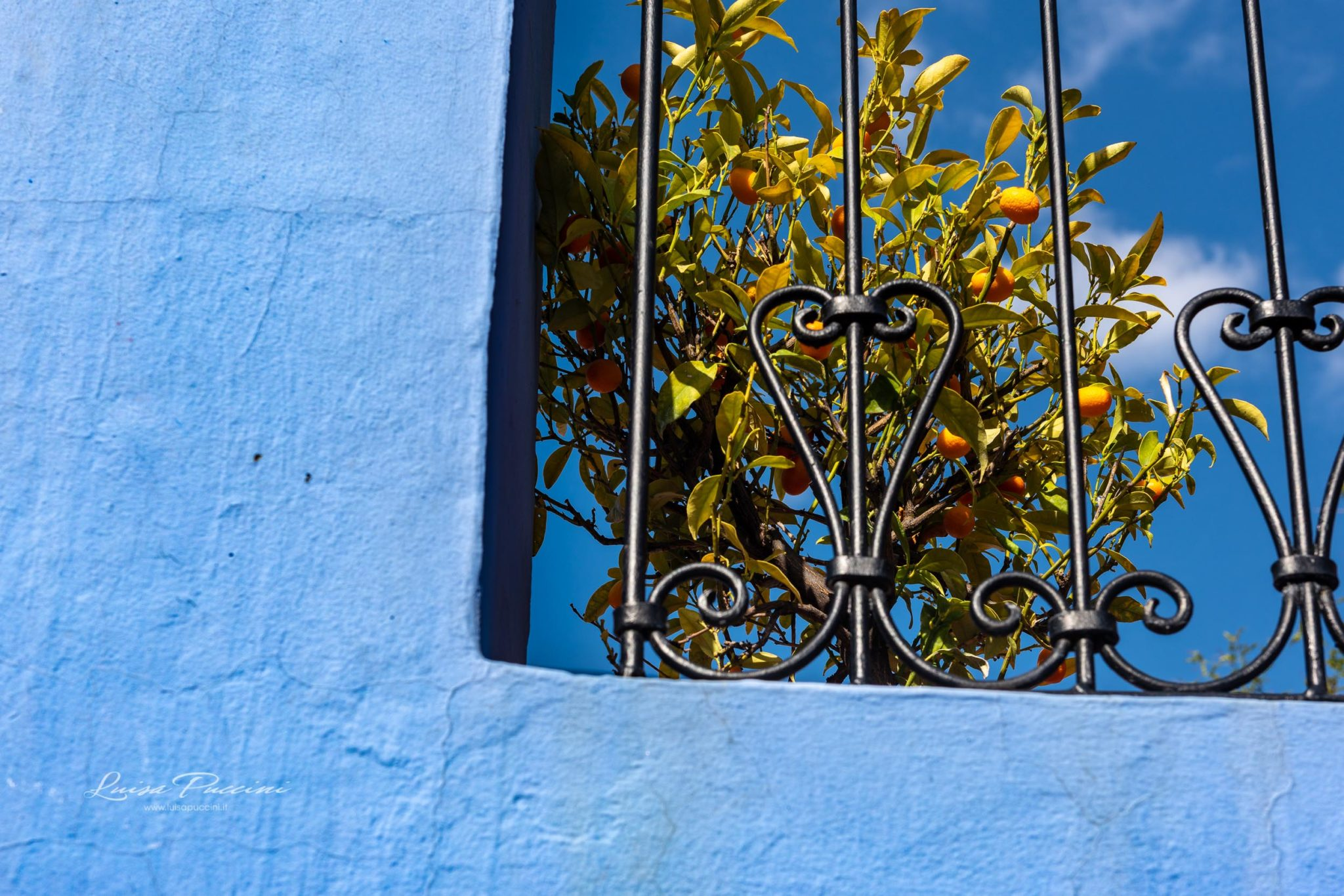 Luisa Puccini, Chefchaouen, blue, travel